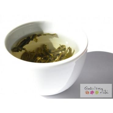 Zöld tea parfüm illatolaj 100ml